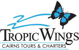 Tropic Wings