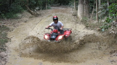 Down and Dirty Quad Bike Tours Kuranda
