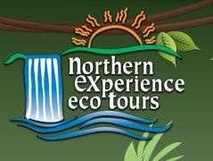 Northern Experience Eco Tours