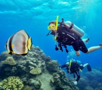Snorkel, enjoy multiple Introductory or Certified scuba dives or join a Semi-Submarine Tour exploring two stunning reef sites.