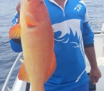 BLUEWATER (REEF) FISHING FOR CORAL TROUT