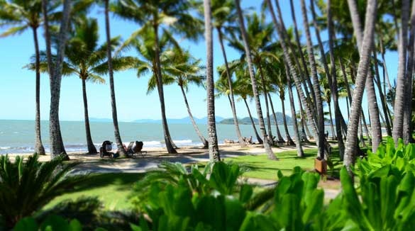 Palm Cove Beach Cairns