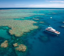 Full Day Reef Cruise on Evolution
