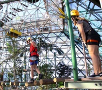 Cairns High Rope Course at the Casino