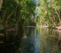 Emmagen Creek. Billy Tea Safaris is the only tour operator that goes to this secret Jewel in the Rainforest, and now it is time for a refreshing rainforest stream swim, in crystal clear fresh waters and without the crowds of people.