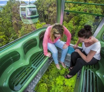 Be amazed by the spectacular tropical rainforest from the unique viewing perspective of Skyrail's glass floor Diamond View Gondolas.